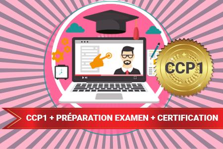 Formateur Professionnel d'Adultes - CCP1 + Préparation Examen + Certification